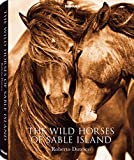 THE WILD HORSES OF SABLE ISLAN