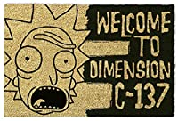 RICK AND MORTY Rick Y Morty Dimension C-137 B