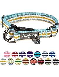 Blueberry Pet Collier Chien, 1,5cm S, 3M réfléchissant Multicolore Rayures Pastel bleu et beige, Collier pour petits chiens