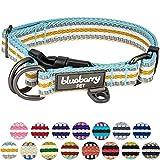 Blueberry Pet 2,5cm L 3M Reflektierendes Bunt Gestreiftes Pastellblau und Beige Hundehalsband für Große Hunde