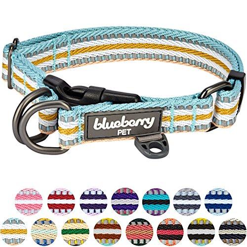 Blueberry Pet 2cm M 3M Reflektierendes Bunt Gestreiftes Pastellblau und Beige Hundehalsband für Mittelgroße Hunde (Nylon-halsband Gear Guardian)