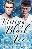 Hitting Black Ice (Heart and Haven Book 1)