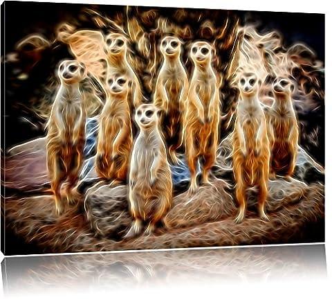 süße kleine Erdmännchen beim Spähen auf Leinwand, XXL riesige Bilder fertig gerahmt mit Keilrahmen, Kunstdruck auf Wandbild mit Rahmen, günstiger als Gemälde oder Ölbild, kein Poster oder Plakat