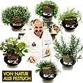 Bio Kräuter-Pflanzen 6er Set für Gourmets von LÀBiO! Kräuter bei Du und dein Garten