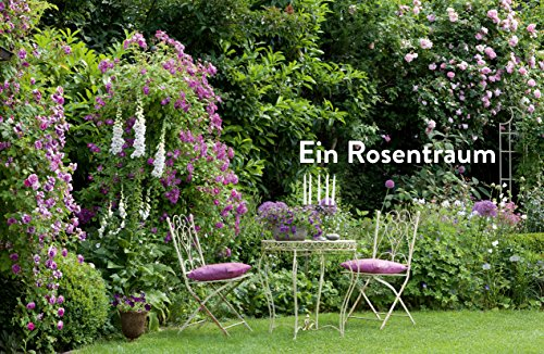 Verrückt nach Garten: Ideen und Erfahrungen kreativer Gärtner - 4