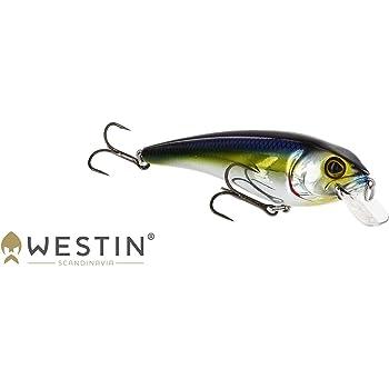 Barschk/öder Zander /& Barsch Crankbait Wobbler zum Spinnfischen auf Hecht Hechtk/öder Westin Barry The Bass Floating 10cm 22g