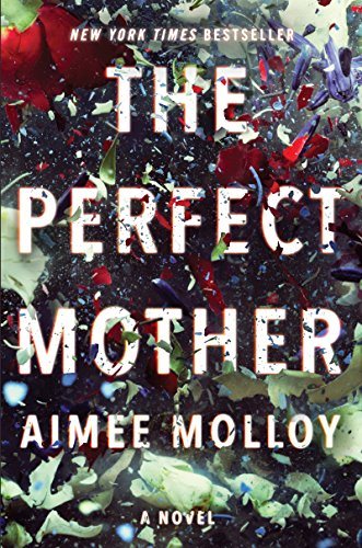 PDF Download The Perfect Mother Full Books Free Ebook Collection