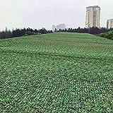 Chihen Giungla Rete Mimetica All'aperto Campeggio A Caccia Tiro Nascondere Decorazione Rete Mimetica, 44 Taglie Rete Ombreggiante (Color : Green, Size : 2×10m)