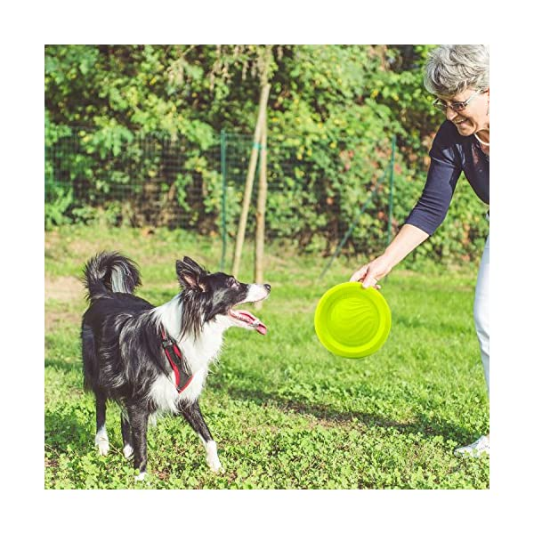 LaRoo Dog Flying Disc Dog Frisbee ABS Material Floatable Dog Toys Pet Frisbee for Puppies, Small, Medium and Large Dogs 2