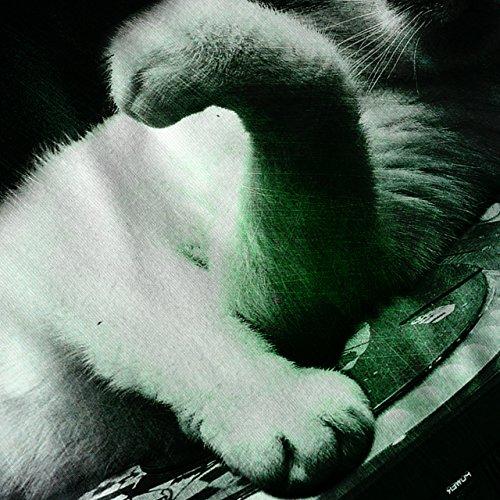 irre Dj Tier Musik Katze irre Katze Damen S-2XL Muskelshirt   Wellcoda Schwarz