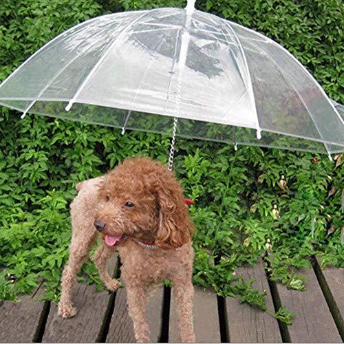 Correa de paraguas para perros - Vista fácil Transparente Plegable Cachorro Cachorro Paraguas Perros pequeños Cachorros 20 pulgadas Largo de espalda
