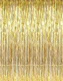 Theme My Party Golden Metallic Fringe Foil Curtain 3Ft by 6Ft Curtains