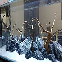 suchergebnis auf f r aquarium steine haustier. Black Bedroom Furniture Sets. Home Design Ideas