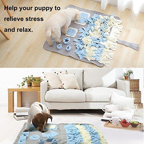 Schnüffelteppich für Hunde, Hund Riechen Trainieren, Geruchsempfindung Trainieren Matte, Schadstofffreies Hundespielzeug Fördert Natürliche Nahrungssuche, Spielen Matte Toy Nase Arbeit für Haustier - 6