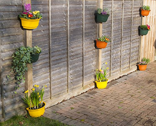 4-x-premium-curved-garden-planters-for-fences-colourful-attractive-green-yellow-black-and-terracotta