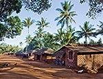 Healthy Homes in Tropical Zones: Impr...