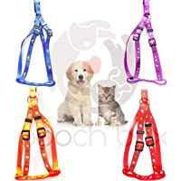 PoochBox Nylon Puppy/Cat/Dog Pet Harness 15mm Leash Set Printed Walking Adjustable (Color and Print May Vary) Size…