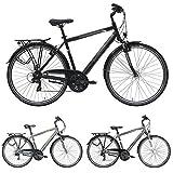 Pegasus Piazza 21 Gang Herrenfahrrad Shimano Trekking Fahrrad 2018, Farbe:schwarz, Rahmenhöhe:53 cm