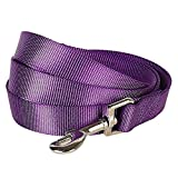 Blueberry Pet Durable Classic Solid Color Dog Lead 150 cm x 1.5cm in Dark Orchid, Small, Basic Nylon Leads for Dogs, Matching Collar & Harness Available Separately