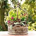 Pflanzen-Krone Corona von Gärtner Pötschke bei Du und dein Garten