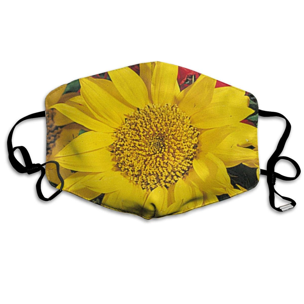 Bdwuhs Mascarillas Bucales,Boca Máscara Dust Mask for Women and Men Beautiful Sunflower Printed Foldable Mask Face Mask Anti-Dust Mouth Mask