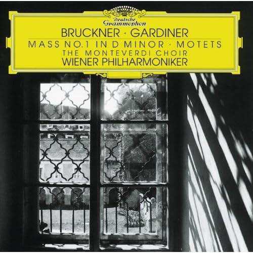 Bruckner: Locus iste, WAB 23