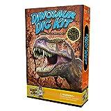 Discover with Dr. Cool Dinosaurier Ausgrabungsset – 3 echte Dinosaurier-Fossilien zum Ausgraben und Sammeln!