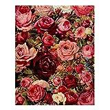 Gazechimp Moderne Diy Kunstdruck Wandbild ( sich die Farben füllen ), Malen nach Zahlen Wohnkultur - Blüte Rose