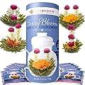 Teabloom Blühende Beerenblüten Teekugeln mit Grünem Tee 12er Pack in Geschenkdose - 4 Sorten Aromatisierter Blütentee mit Beeren - Cranberry, Heidelbeere, Acai-Beere & Erdbeere + Grüner Tee von Teabloom bei Gewürze Shop