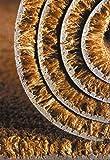 Kokosvelours Kokos-Läufer Farbe Natur, Türmatte, Eingangsmatte, Vorleger Des. 103 100 cm breit 60 cm lang 24 mm dick Kokos-Meterware rutschfest, 100% Kokos-Velours