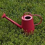 NACHEN Gießkanne Sprinkler Metall verzinkt Sprinkler 2,8 Liter , rose red