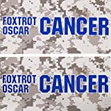 Stkr Commander deux (2) colon Cancer Awareness Stickers Bleu foncé Foxtrot Oscar Cancer = F * ck Off Cancer Boîte à outils Hardhat Bumper travail Funny Stickers pour ordinateur portable