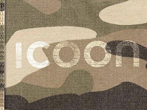 ICOON Camuflaje. Diccionario visual con 2.000 iconos e imágenes. Bolsillo. Amber Press.: global picture dictionary