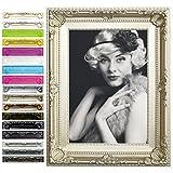 WOLTU Bilderrahmen Foto Galerie Bild Rahmen Bilder Collage Barock 6 Farben in 5 Größen (20x30cm, Champagne)