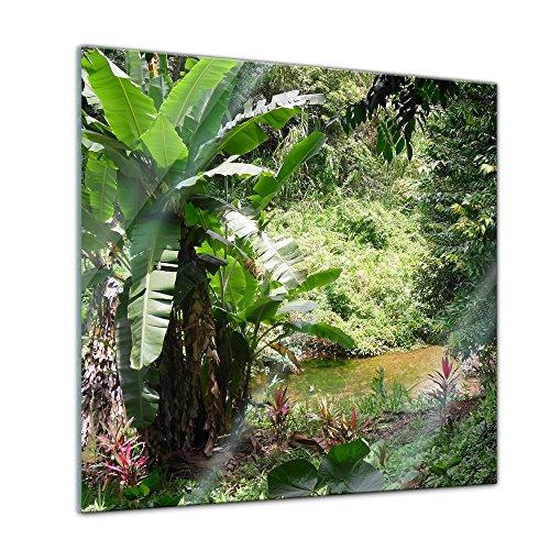 Glasbild - Bananenbaum im Dschungel - 30 x 30 cm - Deko Glas - Wandbild aus Glas - Bild auf Glas - Moderne Glasbilder - Glasfoto - Echtglas - kein Acryl - Handmade