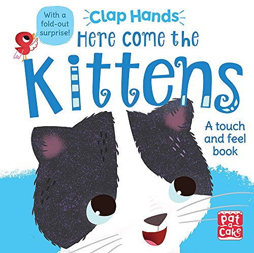 Here Come the Kittens: A touch-and-feel board book with a fold-out surprise (Clap Hands)