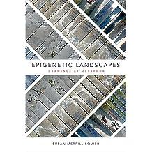 Epigenetic Landscapes: Drawings as Metaphor