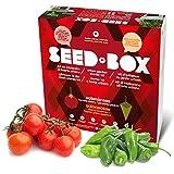 Seed Box SBCOSO - Huerto urbano de tomates cherry y pimientos de padrón (Colección solanáceas)
