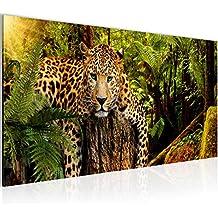 Bilder Afrika Leopard Wandbild Vlies   Leinwand Bild XXL Format Wandbilder  Wohnzimmer Wohnung Deko Kunstdrucke Grün