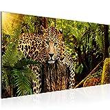 Bilder Afrika Leopard Wandbild Vlies - Leinwand Bild XXL Format Wandbilder Wohnzimmer Wohnung Deko Kunstdrucke Grün 1 Teilig -100% MADE IN GERMANY - Fertig zum Aufhängen 003512a