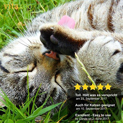 VITAZOO Premium Hundehaarbürste Hundebürste, Softbürste, Fellbürste in schwarz für Hunde und Katzen mit 2 Jahren Zufriedenheitsgarantie - 5