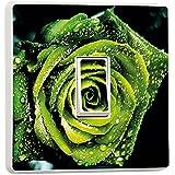 Pretty Interruptor de luz Decoración Pegatinas–flores, animales, naturaleza, deporte diseños–Generic único–por stika. co