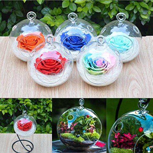 Bureze à suspendre Boule de Sphère de boule en verre