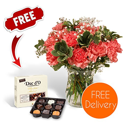 fresh-flowers-delivered-delivery-included-18-pink-carnations-bouquet-with-chocolates-flower-food-and