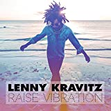 Raise Vibration(CD Collector)