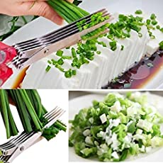 MURTISIDDH Stainless Steel and Plastic Multi-Functional 5 Layers Scissors Cooking Tools Vegetable Cutter with Cleaning Brush (Multicolour)