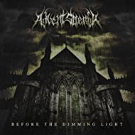 Before the Dimming Light [Explicit]