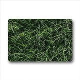DOUBEE Gras Grass Fussmatte Premium Schmutzmatte Rechteckige Türmatte 60cm X 40cm
