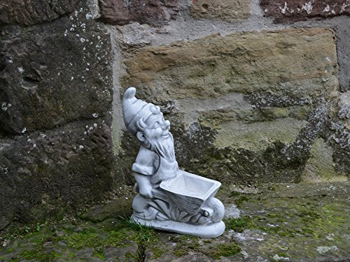 Lustiger massiver Zwerg Gartenzwerg mit Schubkarre aus Steinguss frostfest - 2
