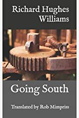 Going South: The stories of Richard Hughes Williams Paperback